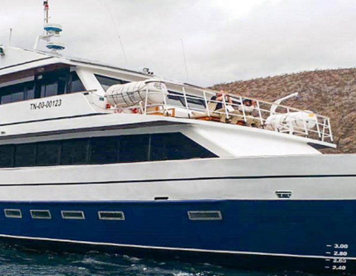galapagos-cruises-bonita