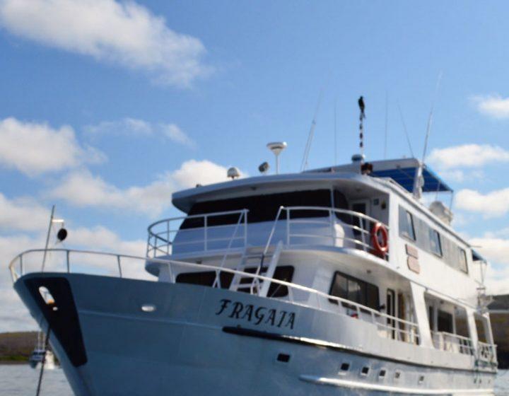 galapagos-cruises-fragata