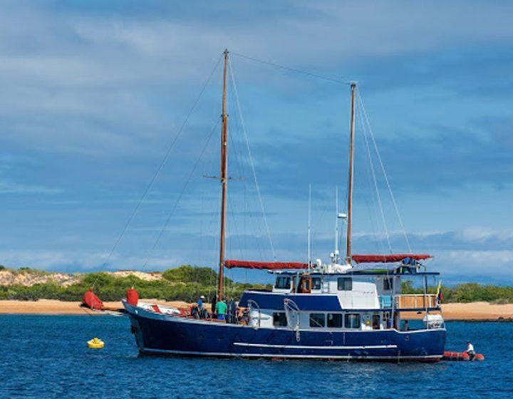 galapagos-cruises-samba