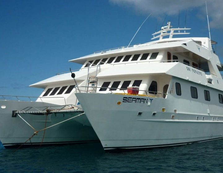 galapagos-cruises-seaman