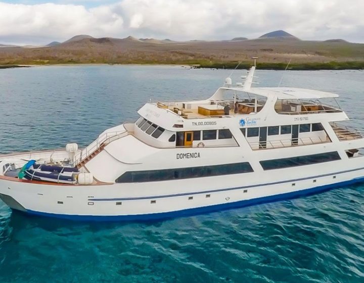 galapagos-cruises-star-journey